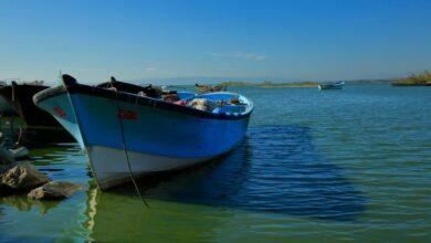 Photo of Balıkesir'de Bir Doğa Harikası: Manyas Kuş Cenneti Gölü